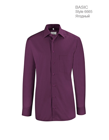 Рубашка-мужская-Regular-Fit-ST6665-Greiff-6665.1120.060-363x467-1